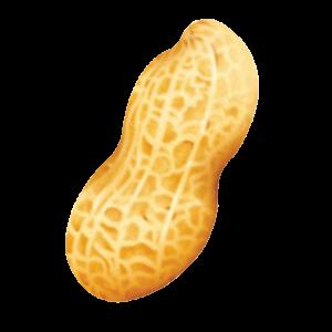 peanut-NE