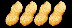 peanut-NE--4