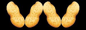 peanuts-Vs
