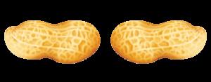 peanuts separator